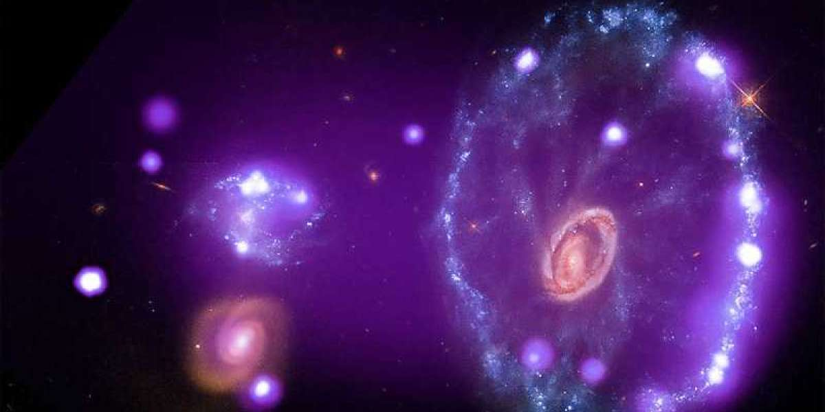 How nearby galaxies form their stars