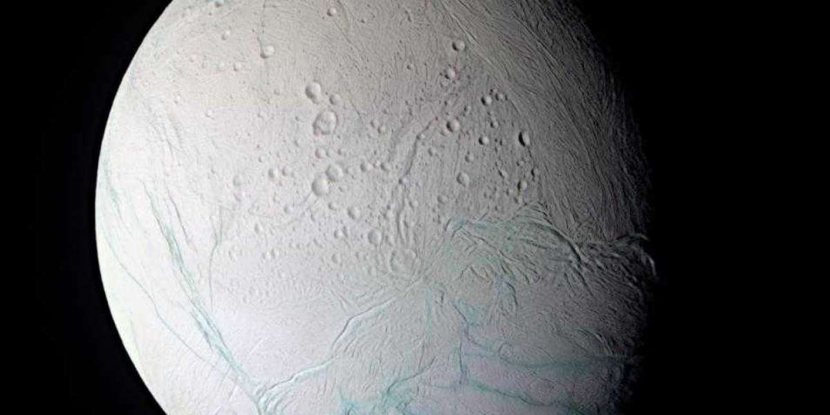 Saturn's moon Enceladus can support Life