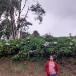 Mounika K Profile Picture